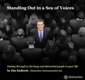 Standing out in a Sea of Voices - book cover